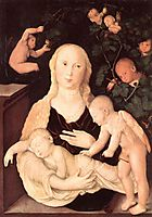 Virgin of the Vine Trellis, baldung