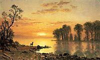 Sunset, Deer, and River, c.1868, bierstadt
