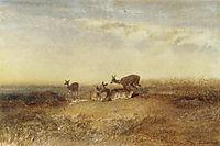 Deer in a Landscape, bodmer