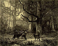 Forest of Fontainbleau, c.1850, bodmer