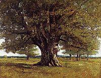 The Oak of Flagey (The Oak of Vercingetorix), 1864, courbet