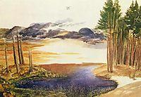 Pond in the wood, c.1496, durer