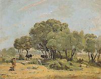 Olive trees in Spain, 1878, hodler