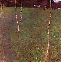 Farmhouses with Birch Trees, 1900, klimt