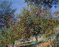 Apple Trees on the Chantemesle Hill, 1878, monet