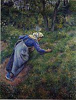 Peasant Gathering Grass, 1881, pissarro