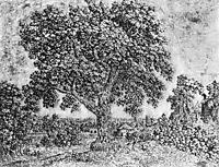 The Great Tree, seghers