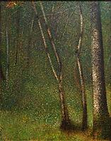 The Forest at Pontaubert, 1881-82, seurat