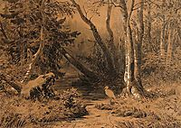 Backwoods, 1870, shishkin