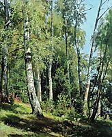 Birch Grove, 1896, shishkin