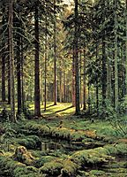 Coniferous Forest. Sunny Day, 1895, shishkin