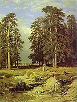 Near Yelabuga, 1886, shishkin