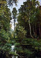 Overgrown pond at the edge of the forest. Siverskaya, 1883, shishkin
