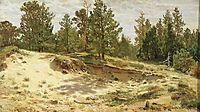Young pines on the sandy cliff. Mary-Howie on Finnish Railways, 1890, shishkin
