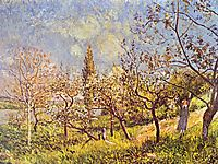 Orchard in spring, 1881, sisley
