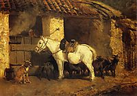 Outside the Stable, troyon