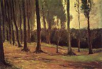 Edge of a Wood, 1882, vangogh