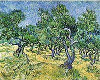 Olive Grove, 1889, vangogh