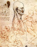 Profile of a man and study of two riders, 1490-1504, vinci