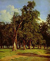 Old elms in Prater , 1831, waldmuller